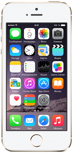 Смартфон Apple iPhone 5s CPO (золотой)